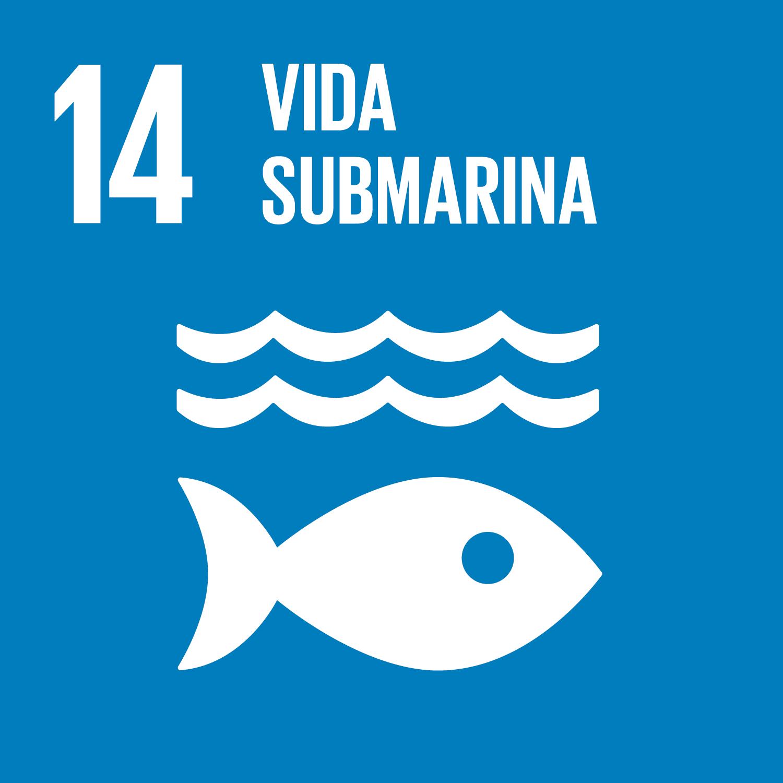 Objetivo 14: Conservar y utilizar en forma sostenible los océanos, los mares y los recursos marinos para el desarrollo sostenible