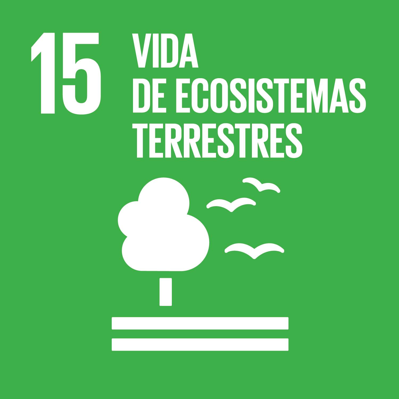 Objetivo 15: Gestionar sosteniblemente los bosques, luchar contra la desertificación, detener e invertir la degradación de las tierras y detener la pérdida de biodiversidad